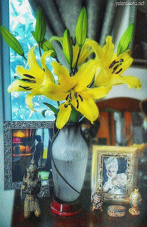 Taipei Life Flowers Photography Romanticism 台北生活 花卉摄影 浪漫主义 Yalan雅岚 黑摄会